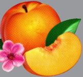 Phoeneix